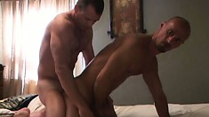 Bald headed bitch gets his ass pounded from behind by a real stud