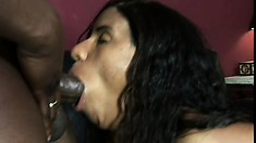 Aziza Diamond plays with her clit while the black stud fills her ass with his cock