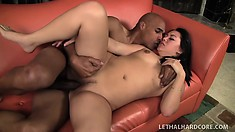 Pretty Korean girl with a spicy ass Tina Lee takes a black rod deep in her snatch