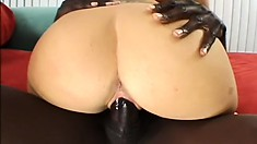 Chubby blonde MILf Austin Taylor takes it from a big black cock