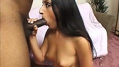 Wonderful Latina has a black guy roughly drilling her tight holes with his huge cock