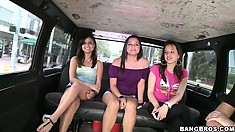 Trippin' trip of naughty brunettes have no idea what's in store in the Bang Bus ride