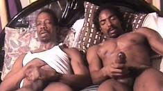 Ebony strongman moans in ecstasy as he makes his big cock burst
